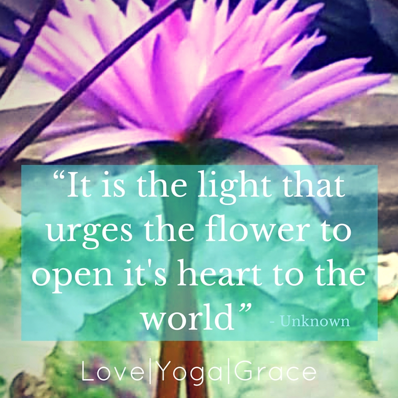 """""""It is the light that urges the flower to open it's heart to the world"""""""